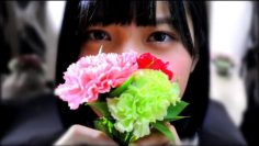 Hirate Yurina 2nd Single Individual PV (English Sub)